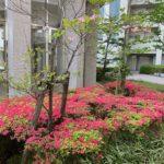 ラヴィベル大阪 堺ブログ<br>オンラインお見合いの利便性